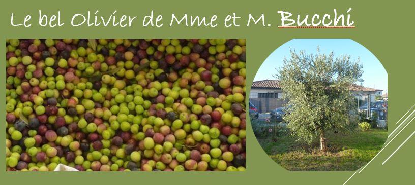 Témoignage de Madame et Monsieur Bucchi